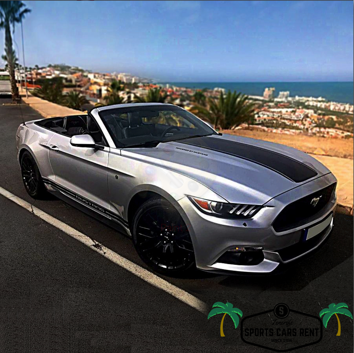 Ford Mustang Silver AUTOMATIC TENERIFE SPORTS CARS RENT - Automatic sports cars
